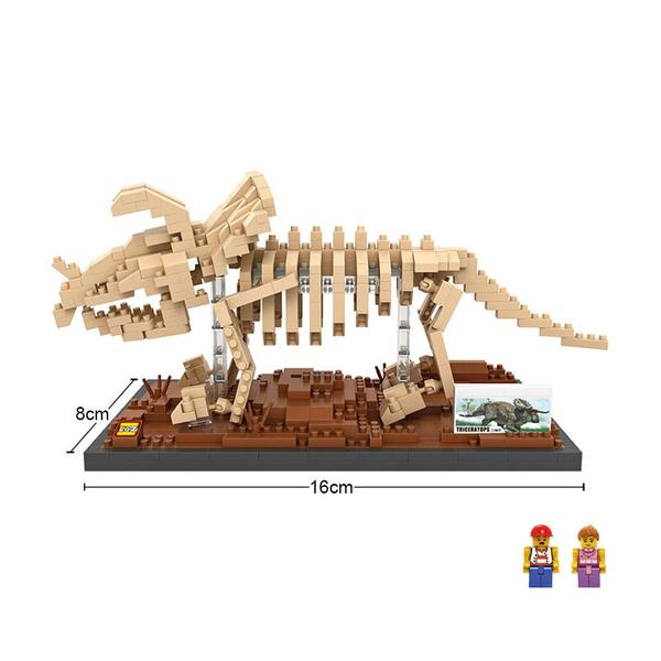 with box Triceratops 660 piece model