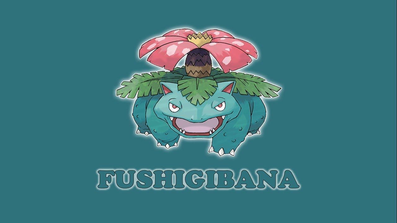 DUZ 8666 Fushigibana